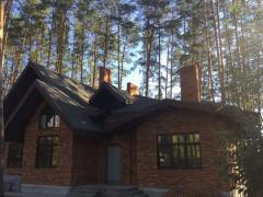House in a pine forest