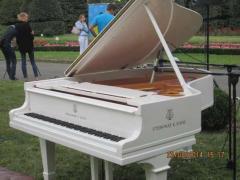 Купить пианино в Киеве,купить рояль Киев белого ,черного