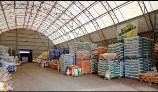 Купити насіння соняшнику і кукурудзи