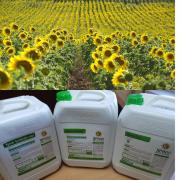 The complex of micronutrients for sunflower