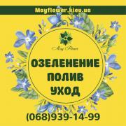 Уход за садом, озеленение, услуги садовника, посадка и обрезка д